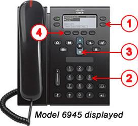 Model 6495