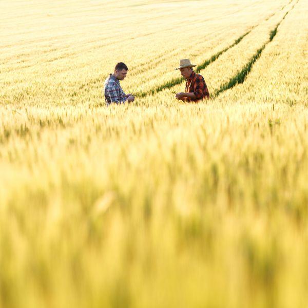 rural suicide prevention