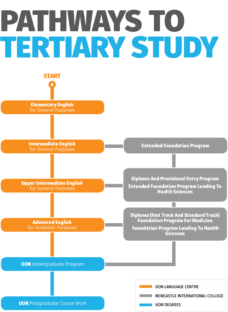 Diagram: Pathways to Tertiary Study