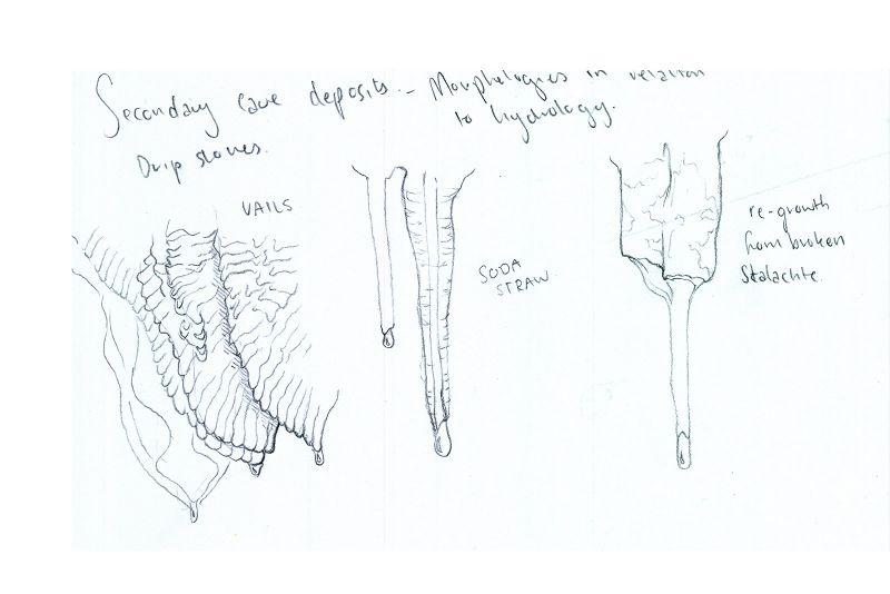 Nikki's field drawing of stalactites