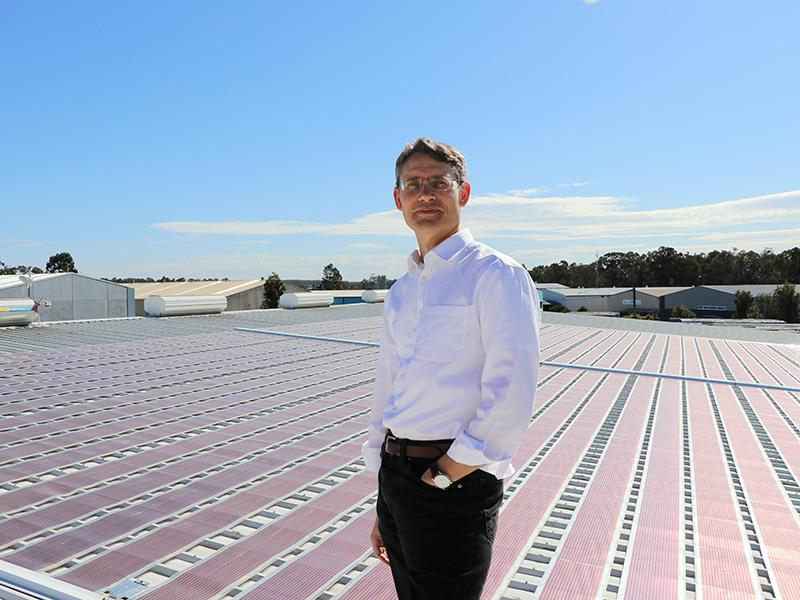 Professor Paul Dastoor stands in front of a printed solar array