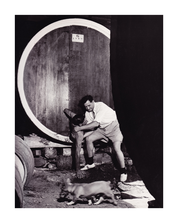 Max Dupain Climbing out after cleaning the inside of a barrel, Mount Pleasant winery, 1950, Courtesy of the National Library of Australia