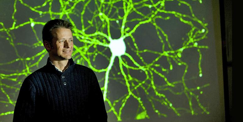 Associate Professor Murray Cairns