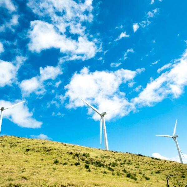 Wind turbines on grassy hill