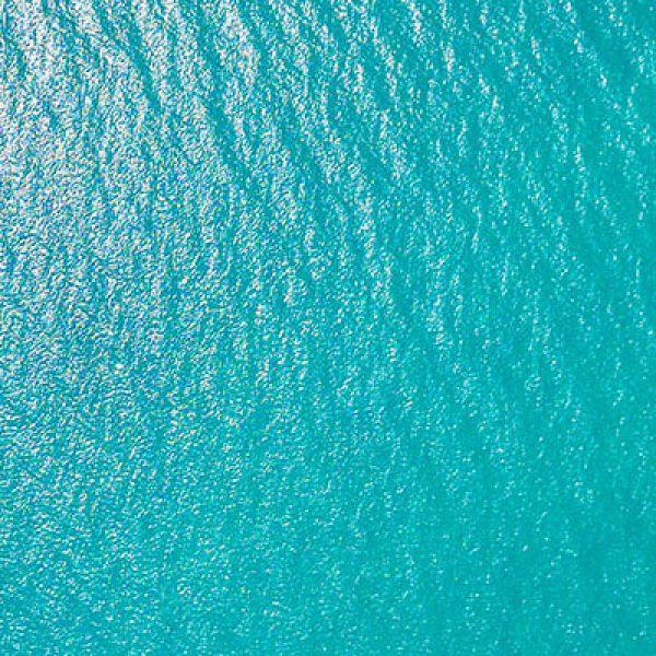 Coastal and Marine Science webinar