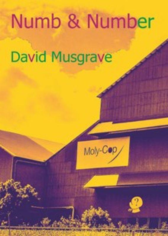 Numb and Number - David Musgrave