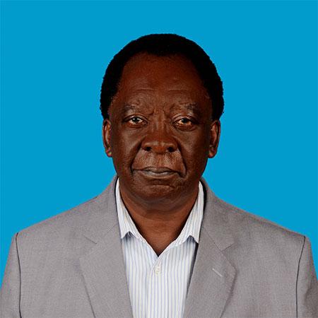 Dr Isiye Ndombi