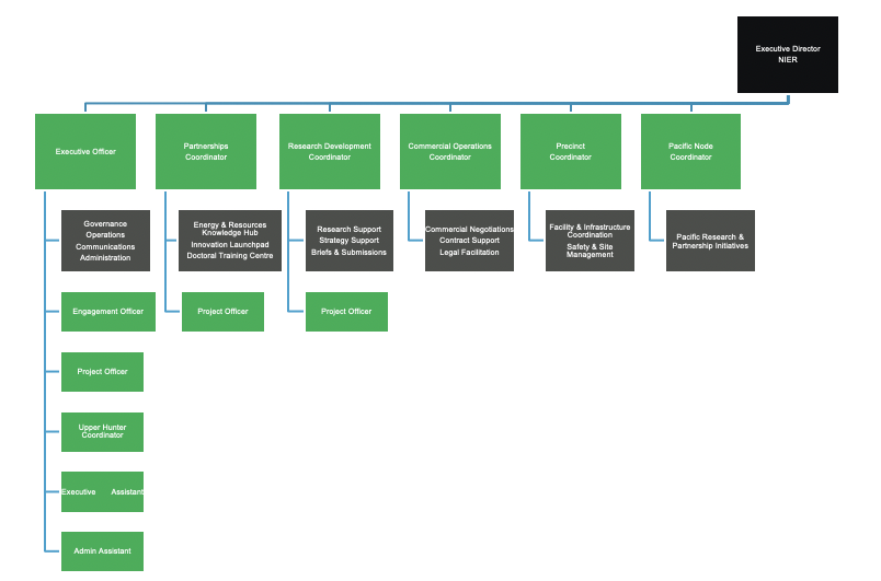 NIER org structure
