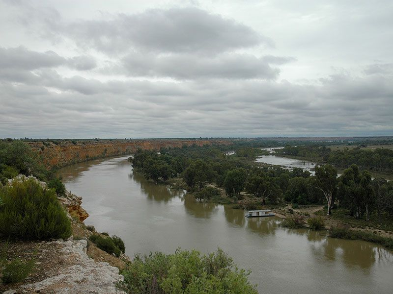 The gorge confined Lower Murray River and fringing swamps. Photo: T Hubble.