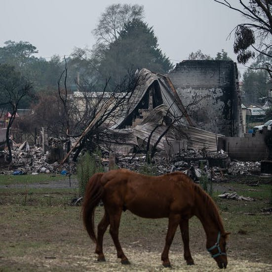 90% of buildings in bushfire-prone areas aren't built to survive fires. A national policy can start to fix this