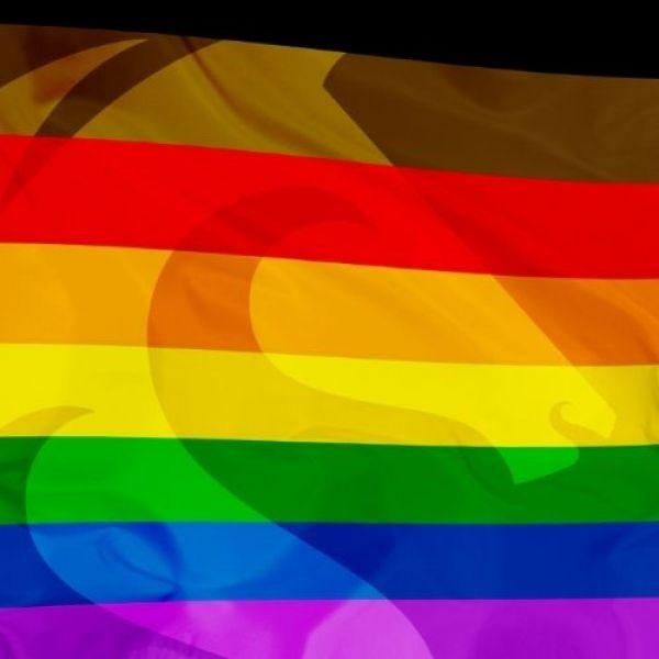 Pride newsroom icon