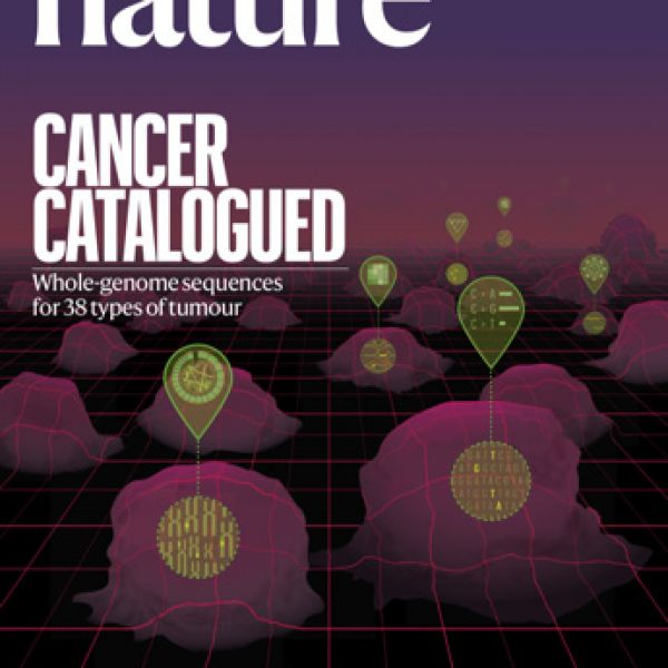 Cover of Nature magazine, where the findings were published.