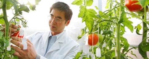 Associate Professor Yong-Ling Ruan
