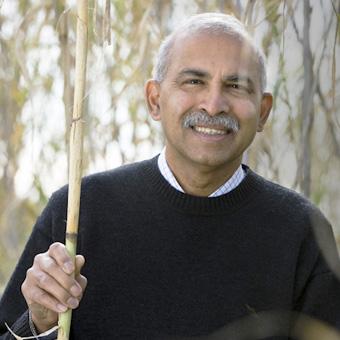 Ravi Naidu