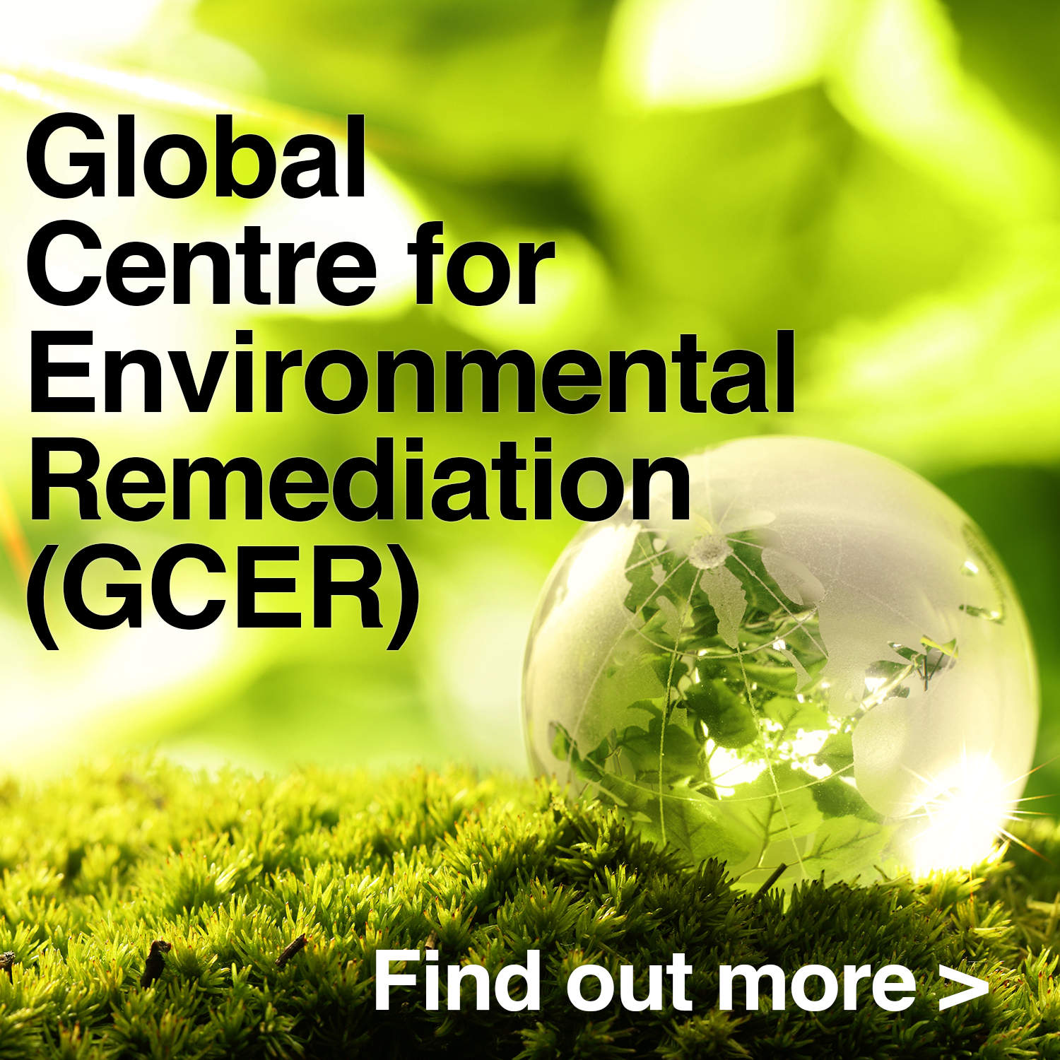 Global Centre for Environmental Remediation