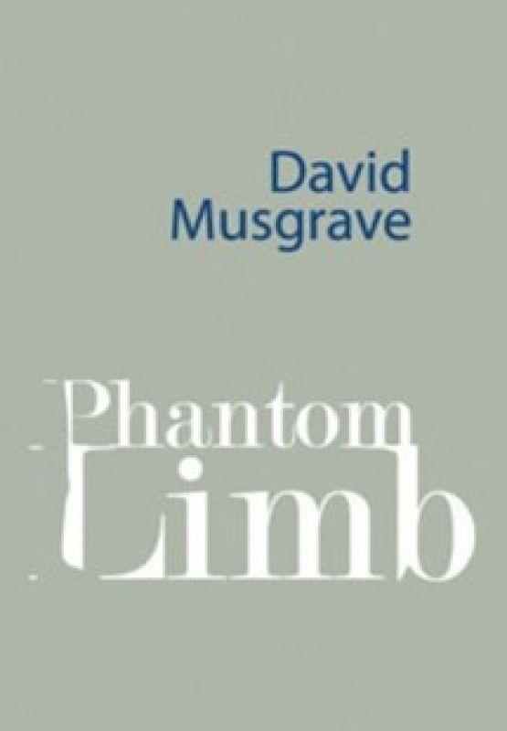 Phantom Limb by David Musgrave