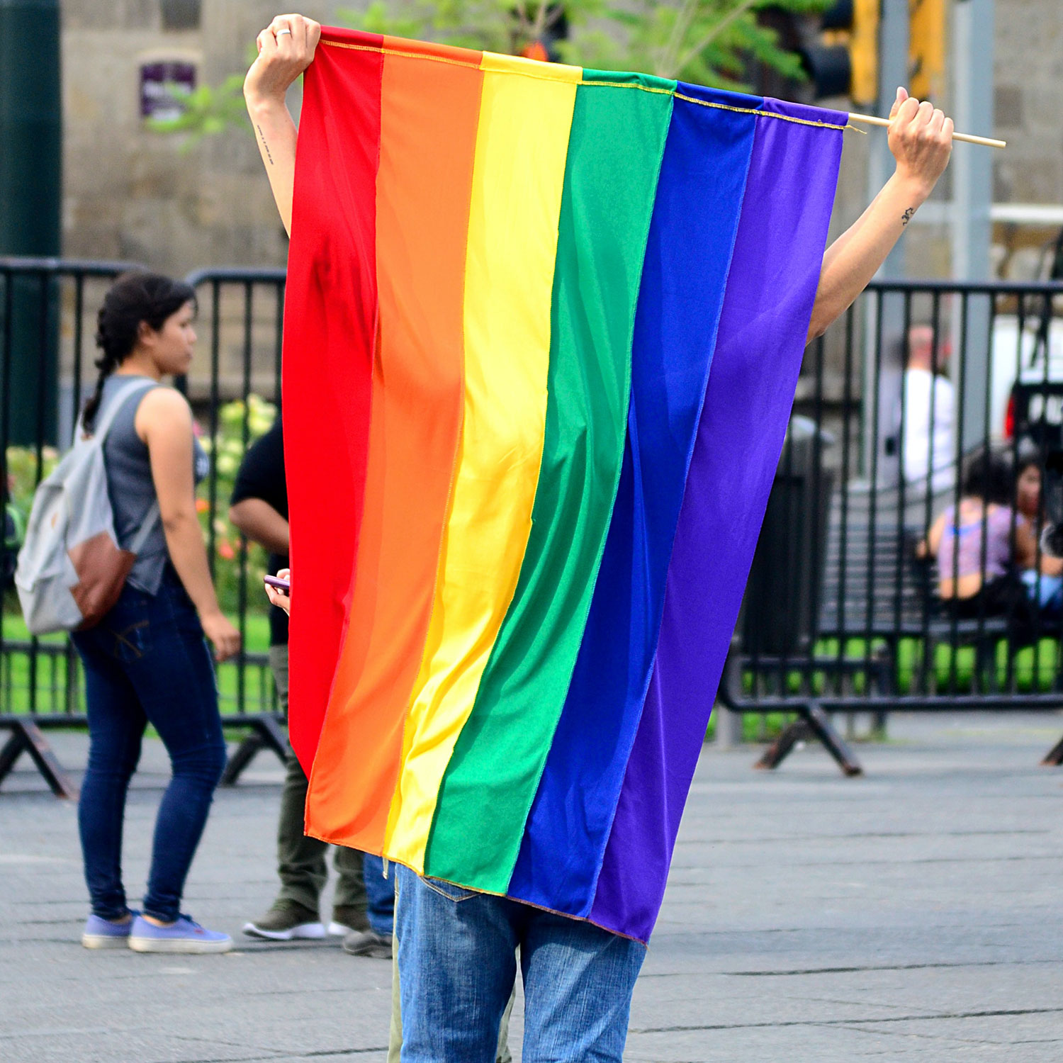 Person holding a rainbow flag to mask someone