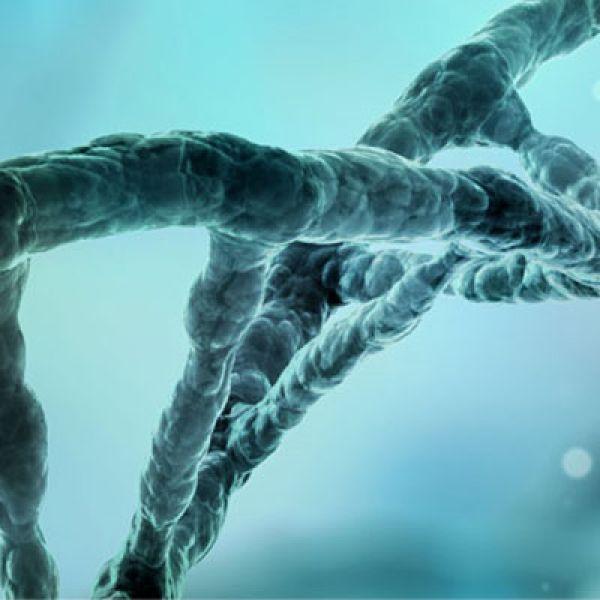 Biomedical Science Webinar