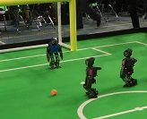 The Newcastle Robotics Laboratory's NUbots have qualified for RoboCup 2014 in Brazil!
