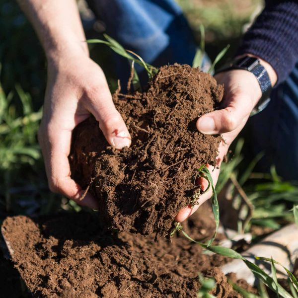 Australian farming the focus of new Soil Research Centre