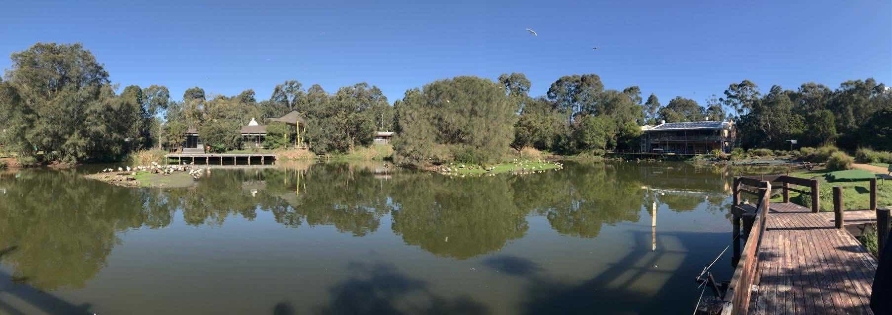 Hunter wetland centre
