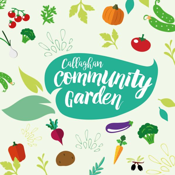 Community Garden Catch-Up