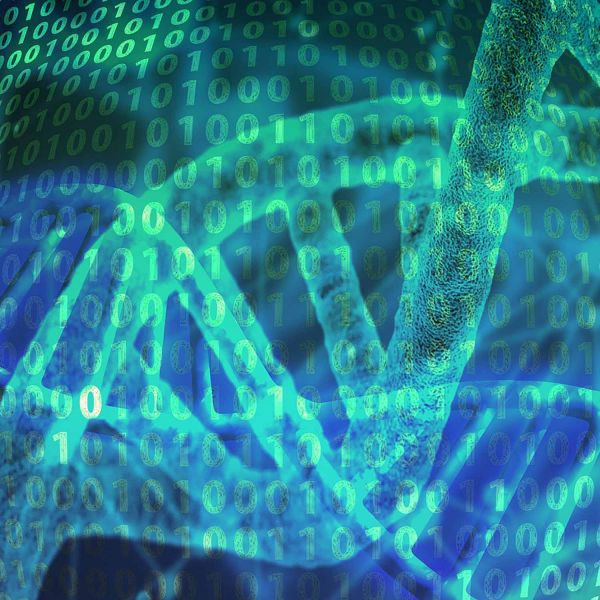 Precision medicine could be all in the genes