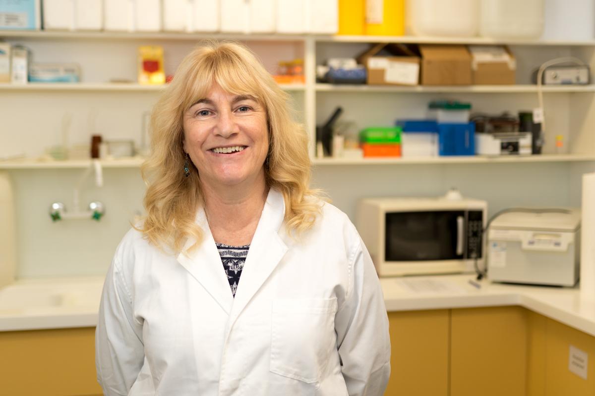 Associate Professor Sally McFadden / Staff Profile / The
