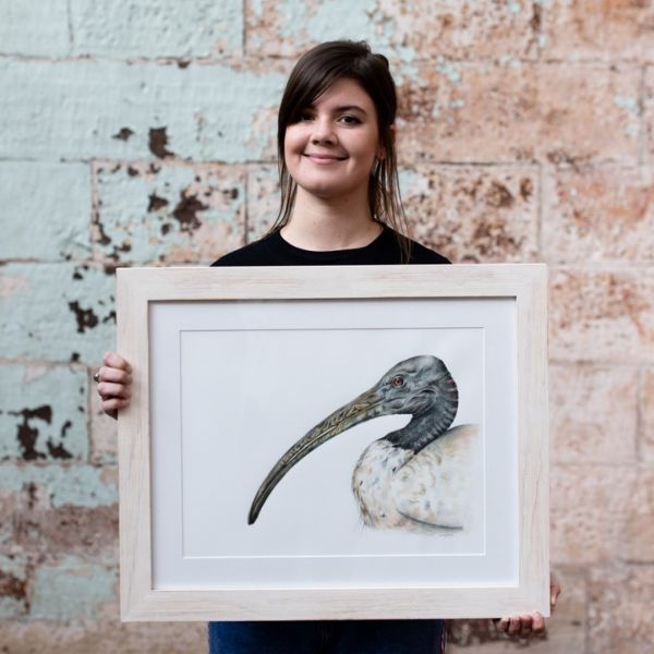 Sami Bayly with illustration of an ibis