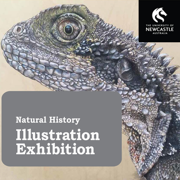 Natural history Illustration Graduate Exhibition