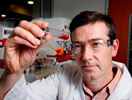 Professor Adam McCluskey