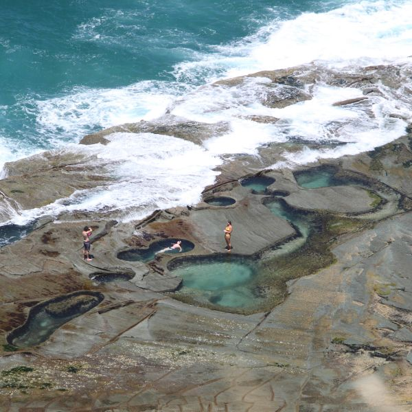 Rock pool risk rating flows from Newcastle research