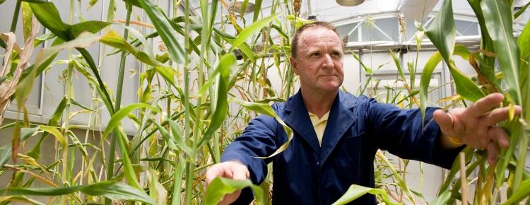 Professor Chris Grof sitting amongst some plants