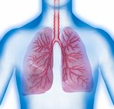 PhD Scholarship: Characterising novel metabolites in Asthma for their function and diagnostic potential