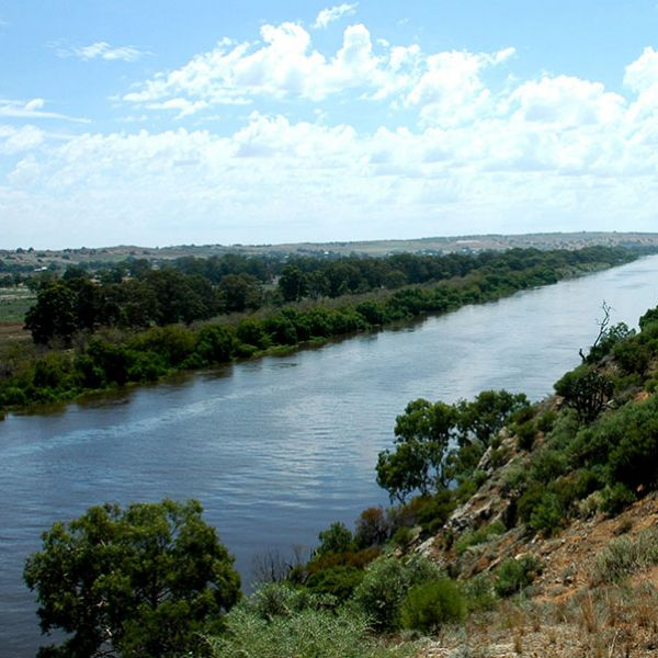 The modern day Lower Murray River. Photo: T Hubble.