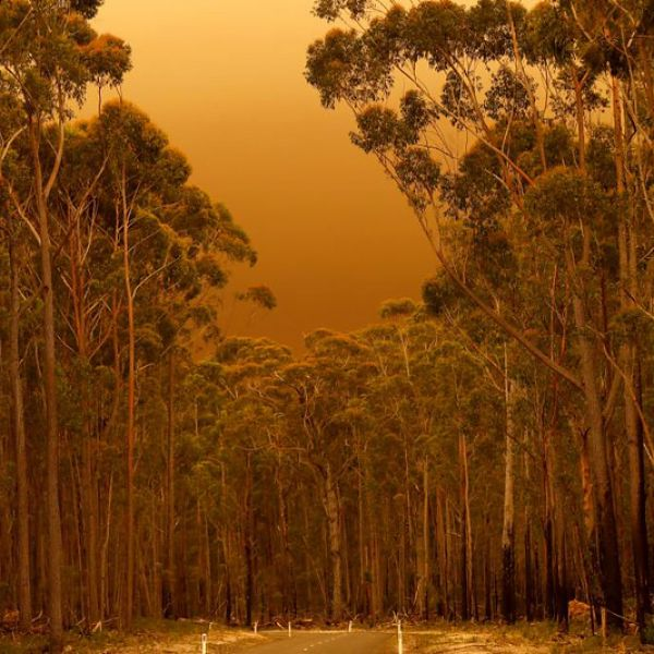 A red sky an thick smoke across a road in Mallacoota, Victoria