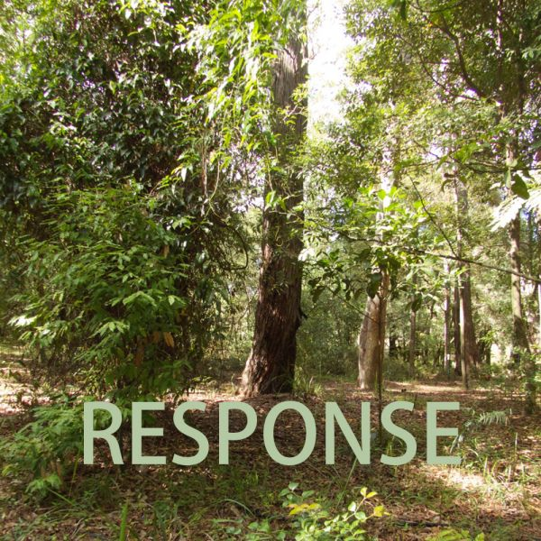 RESPONSE exhibition @ Hunter Region Botanic Gardens