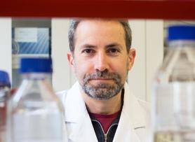 Dr Ian Grainge