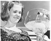 Worlds in a Wineglass conference