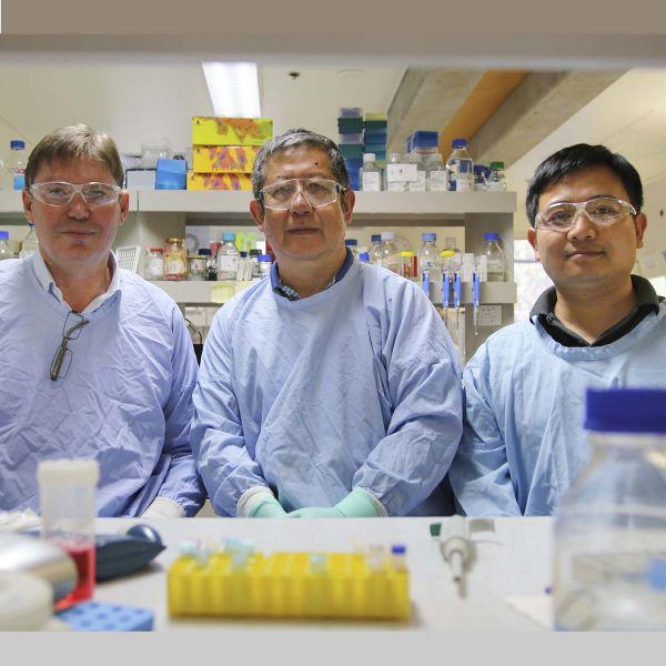 Dr Rick Thorne, Professor Zhang, Dr Jin
