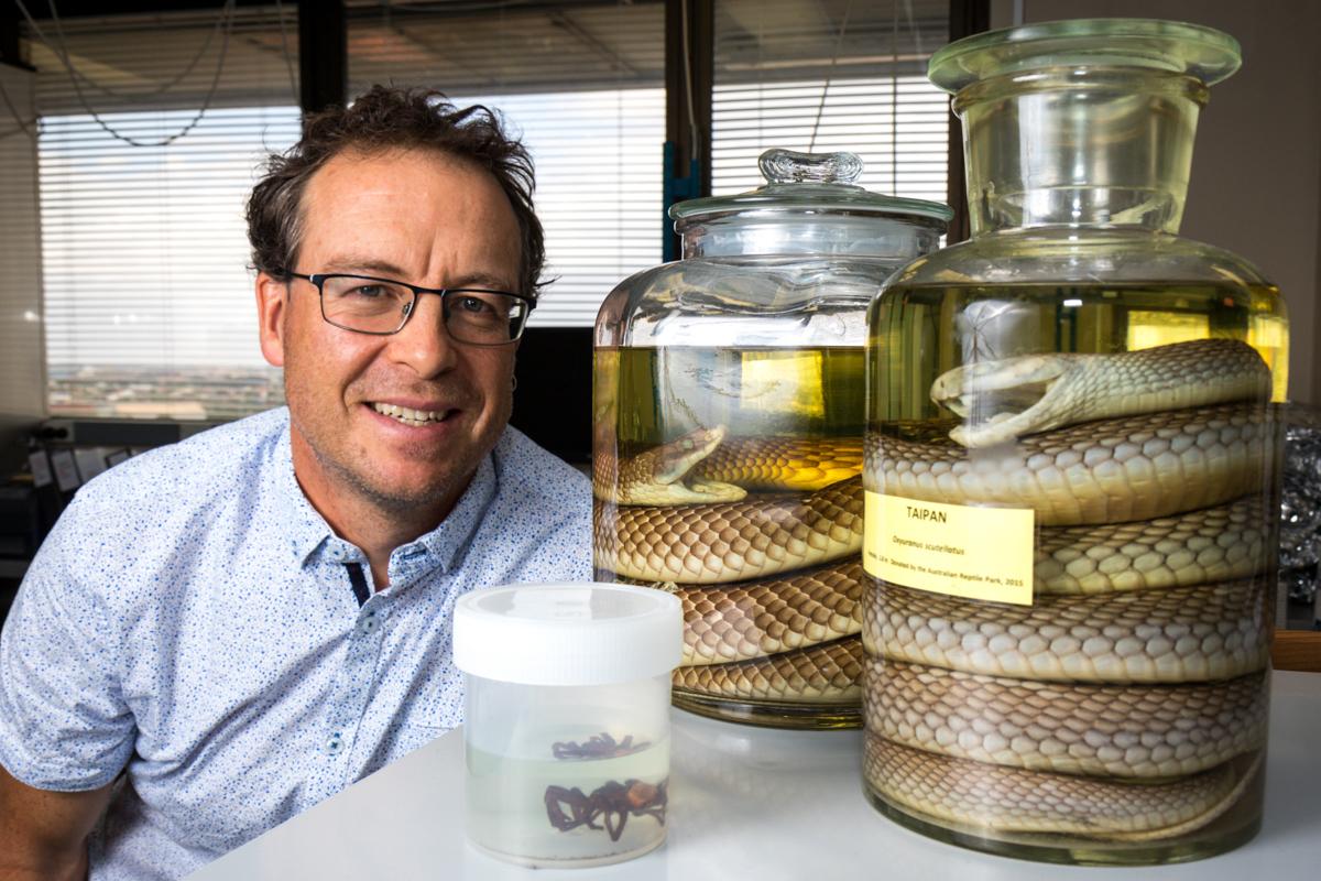 Professor Geoff Isbister