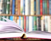 New papers in top-ranked journals