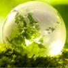 Environmental Remediation (GCER)