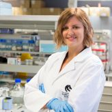 Early Career accolades for fertility research